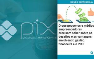O Que Pequenos E Medios Empreendedores Precisam Saber Sobre Os Desafios E As Vantagens Envolvendo Gestao Financeira E O Pix  - Contabilidade na Zona Leste - SP | RT Count